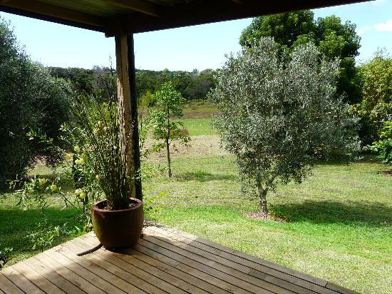 Wharepuke Subtropical Accommodation: View from the veranda