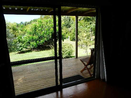 Wharepuke Subtropical Accommodation: View from the lounge
