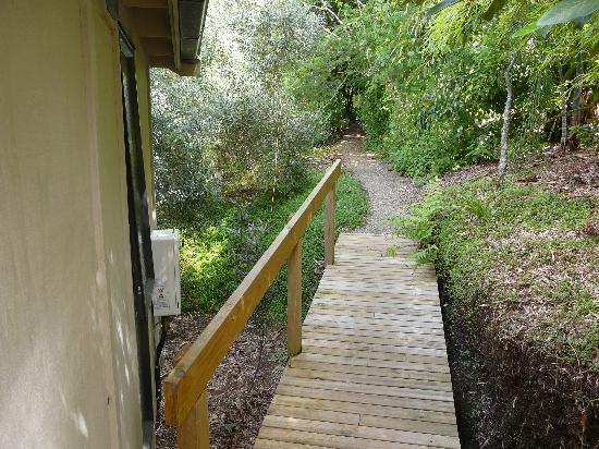Wharepuke Subtropical Accommodation: Pathway to cottage