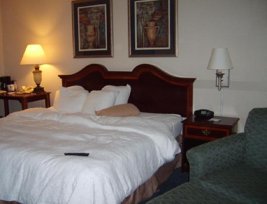 Hampton Inn Winchester-North: King sized room