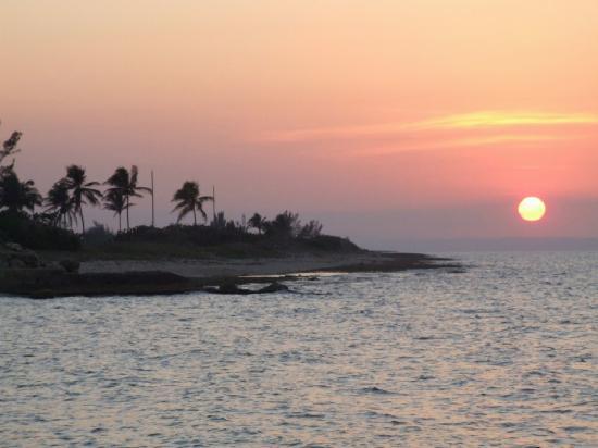 Hotel Oasis: sunset