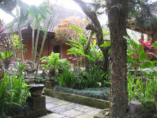 Puri Saraswati Bungalows : Jardin