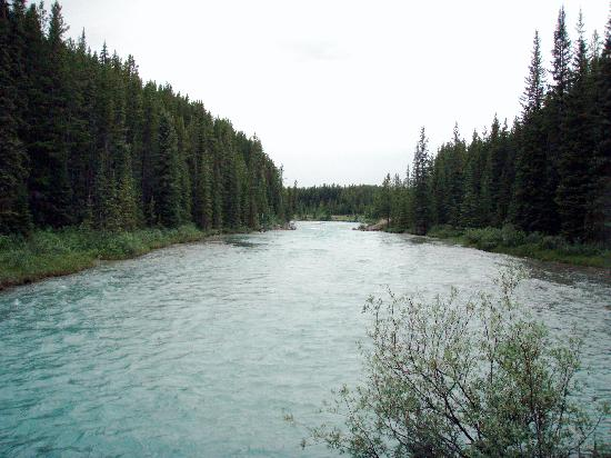 Lake Louise Campground : Bow River