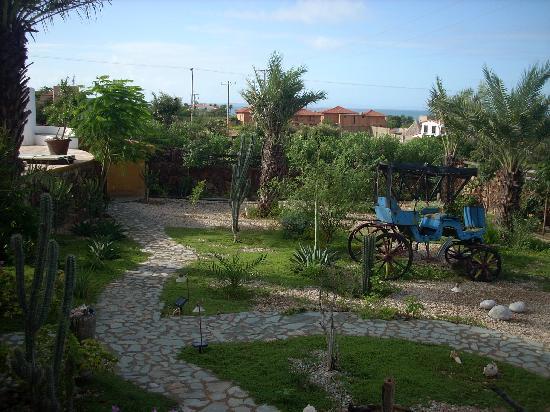 StevieWonderLand: Garden Area