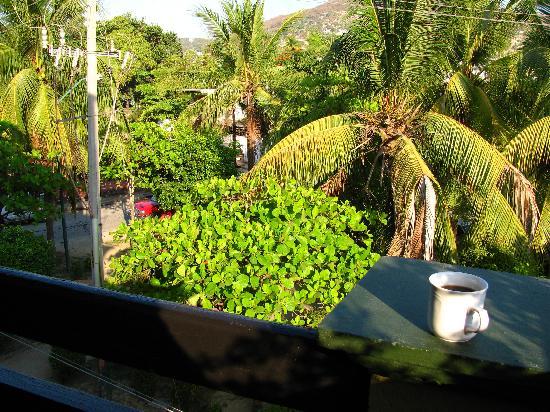 Hotel Solimar Inn Suites: Park