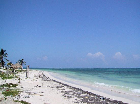 Hotel Maya Luna: span of gorgeous peaceful beach