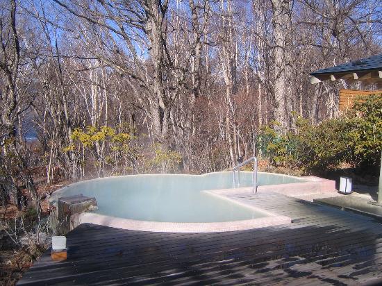 Hotel Shikisai: 泉質・眺め どちらも最高の露天風呂