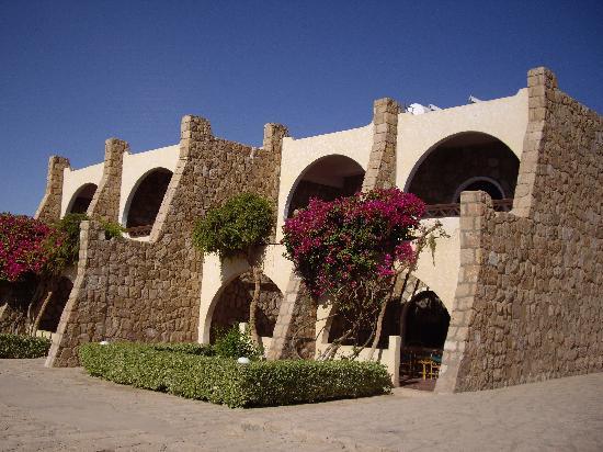 Seti Abu Simbel Lake Resort: コテージ・バルコニー側