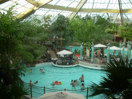 Subtropical swimming pool picture of center parcs - Suffolk hotels with swimming pool ...