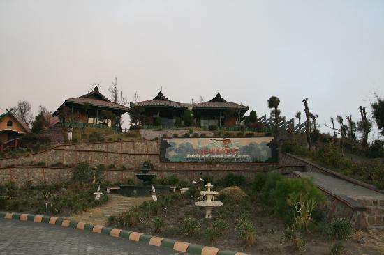 Lava View Lodge : bungalow