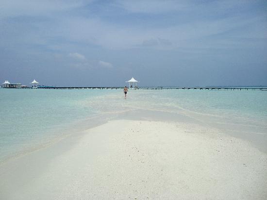 Cinnamon Hakuraa Huraa Maldives: Lingua di mare