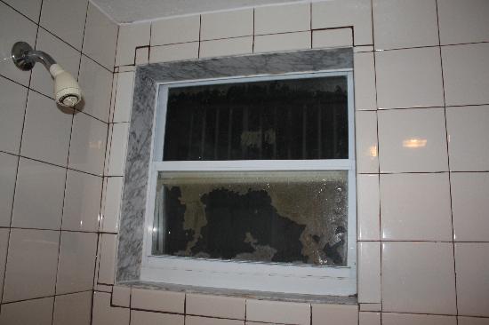 Palm Beach Oceanfront Inn: Coucou, voilà la douche.