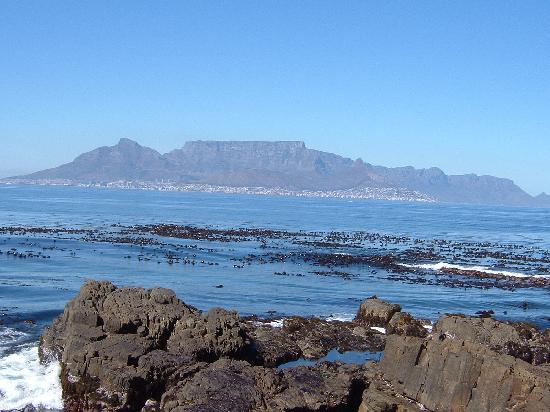 Cape Town Merkez, Güney Afrika: view of Table Mountain