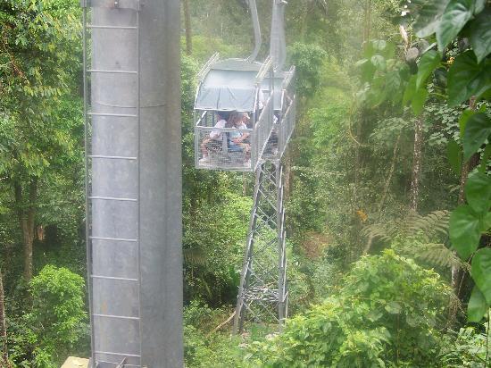 Veragua Rainforest Park: The Canopy Tram