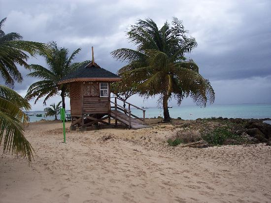 Trinidad en Tobago: Pigeon Point beach in Tobago