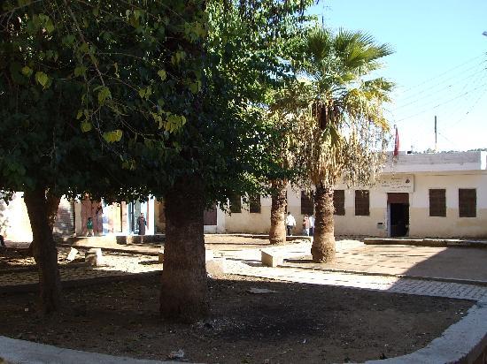 Riad Boujloud: Le jardin du musée
