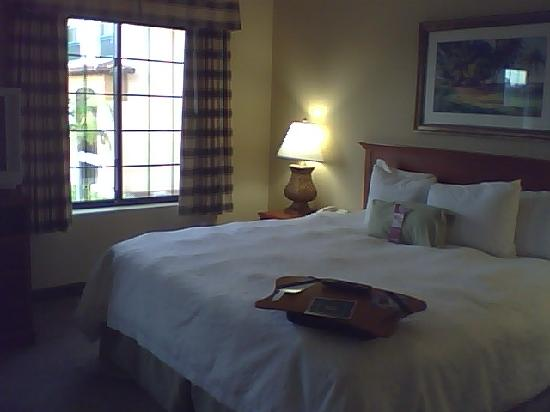 Hampton Inn & Suites Camarillo: Sleeping area in room
