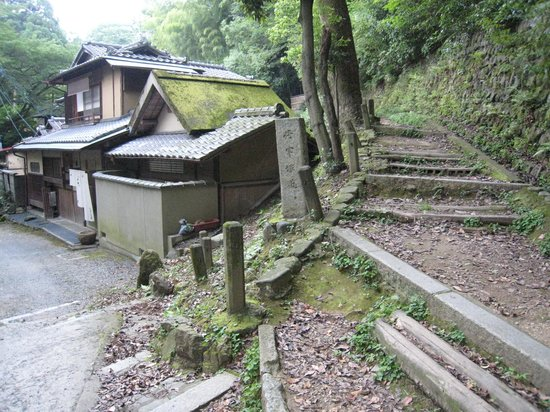 Salon Haraguchi Tenseian: 全景