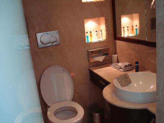 Pride Hotel Chennai: Bathroom