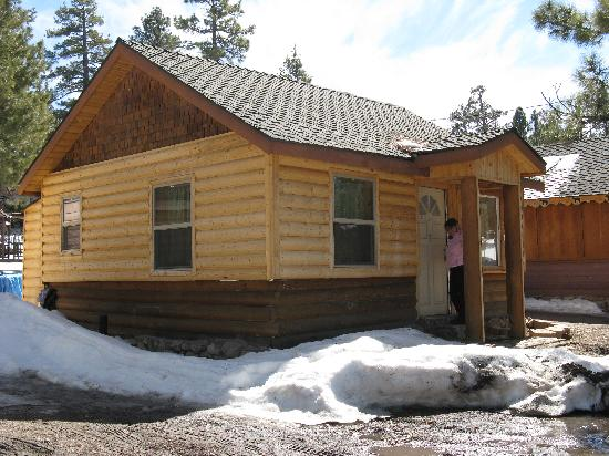 Cabins4less: CAMP HOLLYWOOD #1