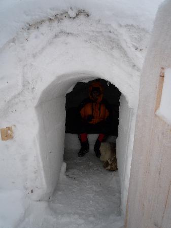 Hotel Jeris: Inside the igloo