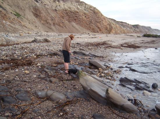 Jalama Beach County Park: tidepools