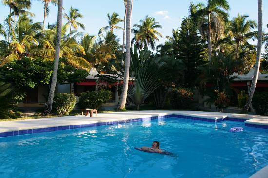 Villas EVA LUNA : piscine