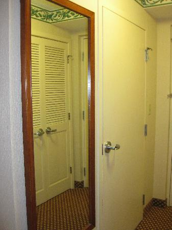 Superieur Hilton Garden Inn Williamsburg: Bathroom Door And Full Length Mirror