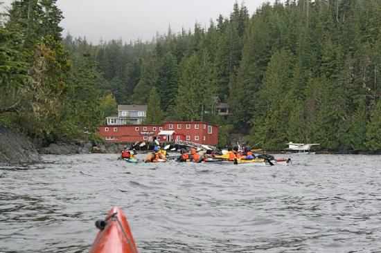 Telegraph Cove Resort: view from the sea