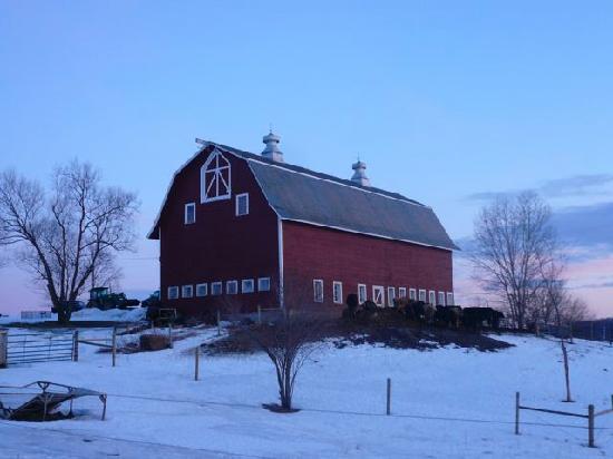 Falkenbury Farm Guest House: The barn