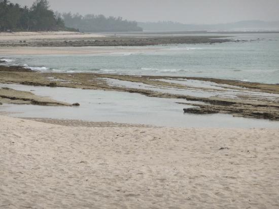 Jacaranda Indian Ocean Beach Resort: Plage de l'hotel à marée basse