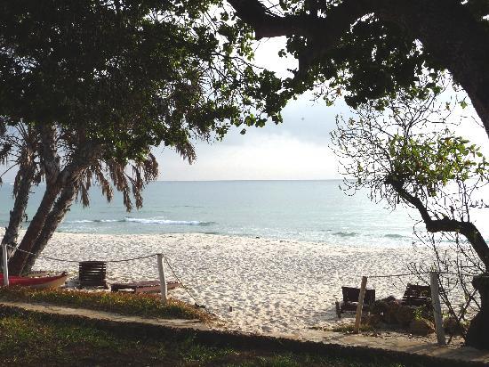 Jacaranda Indian Ocean Beach Resort: Vue d'un bungalow en 1ère ligne... Le PARADIS