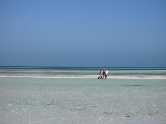 Gran Caribe Club Villa Cojimar: ^Plage à marée basse