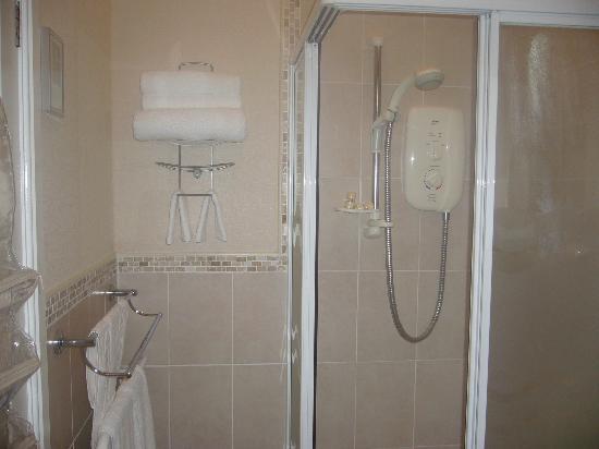 Badgers Wood Guest House: bathroom