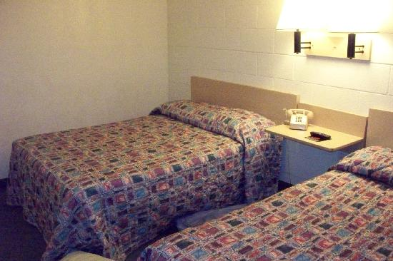 Limited Inn: The Room at Motel 6 Marion...  235
