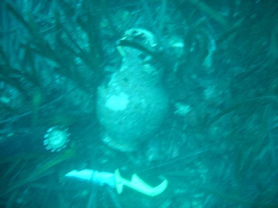 Scoglio di Formica : Brocca Romana in situ subacqueo