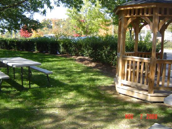 TownePlace Suites Charlotte Arrowood : outside picnic area with a grill