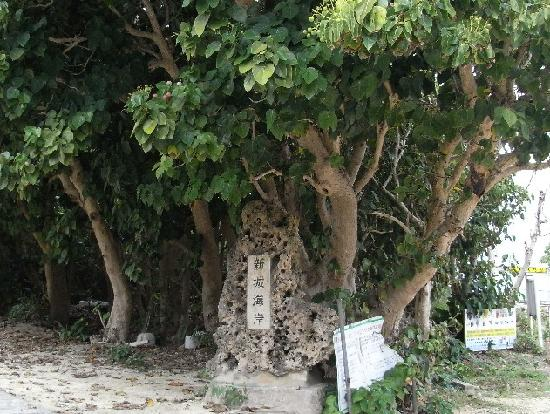 Aragusuku Beach: 南国の雰囲気ある看板