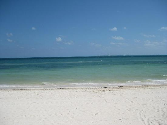 Beloved Playa Mujeres : View of Isla Mujeres from La Amada beach