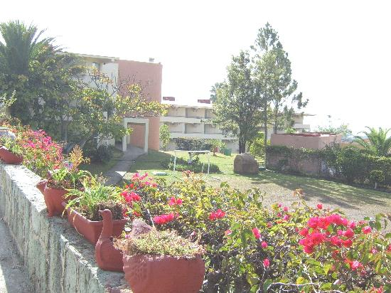 Mision Oaxaca: gardens