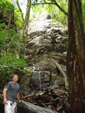 Hotel Bula Bula: In the rainforrest