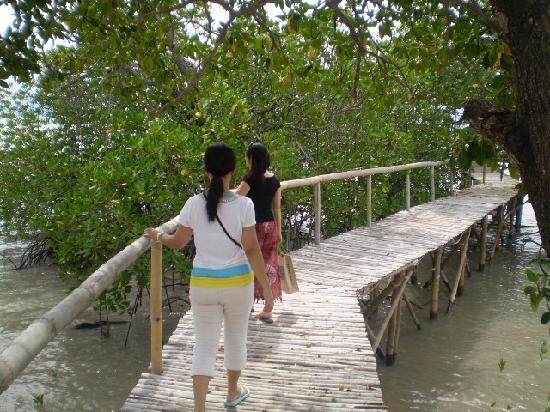 Dos Palmas Island Resort & Spa: dos palmas