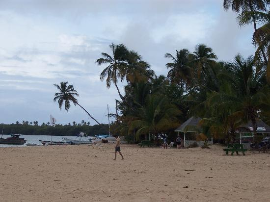 Sandy Point Village: Pigeon Point beach in Tobago