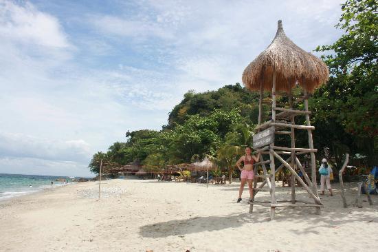 Tamaraw Beach Resort: tamaraw 05