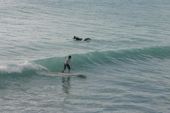 Zed's Surfing Adventures: freights bay