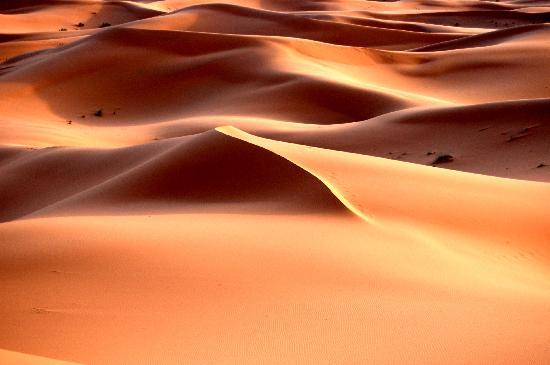 Guest House Merzouga: La magia del deserto
