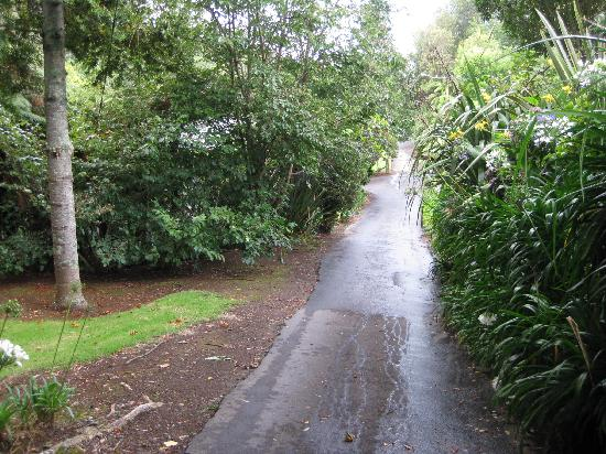 A secluded driveway into Egmont Eco Lodge