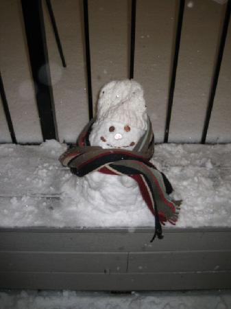 Hotel Metro: Our Snowman we built on the Roof Terrace