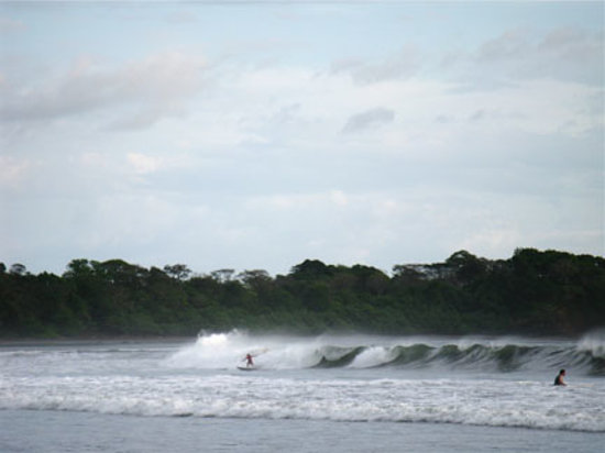 Surf is considered the best at Santa Catalina.