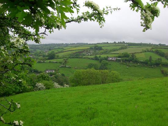 Coed Y Bryn, UK: View from Penbeili Mawr